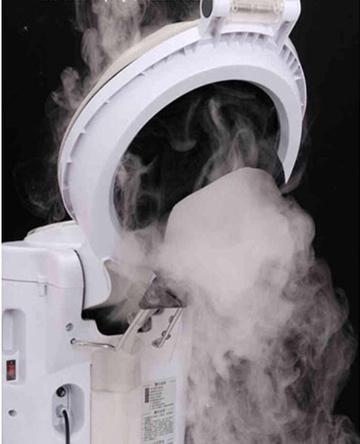 MicroMist Steam Spa Treatment Machine